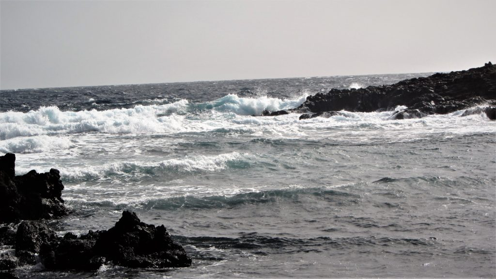 Wind and waves...just to get used to it, the sooner the better