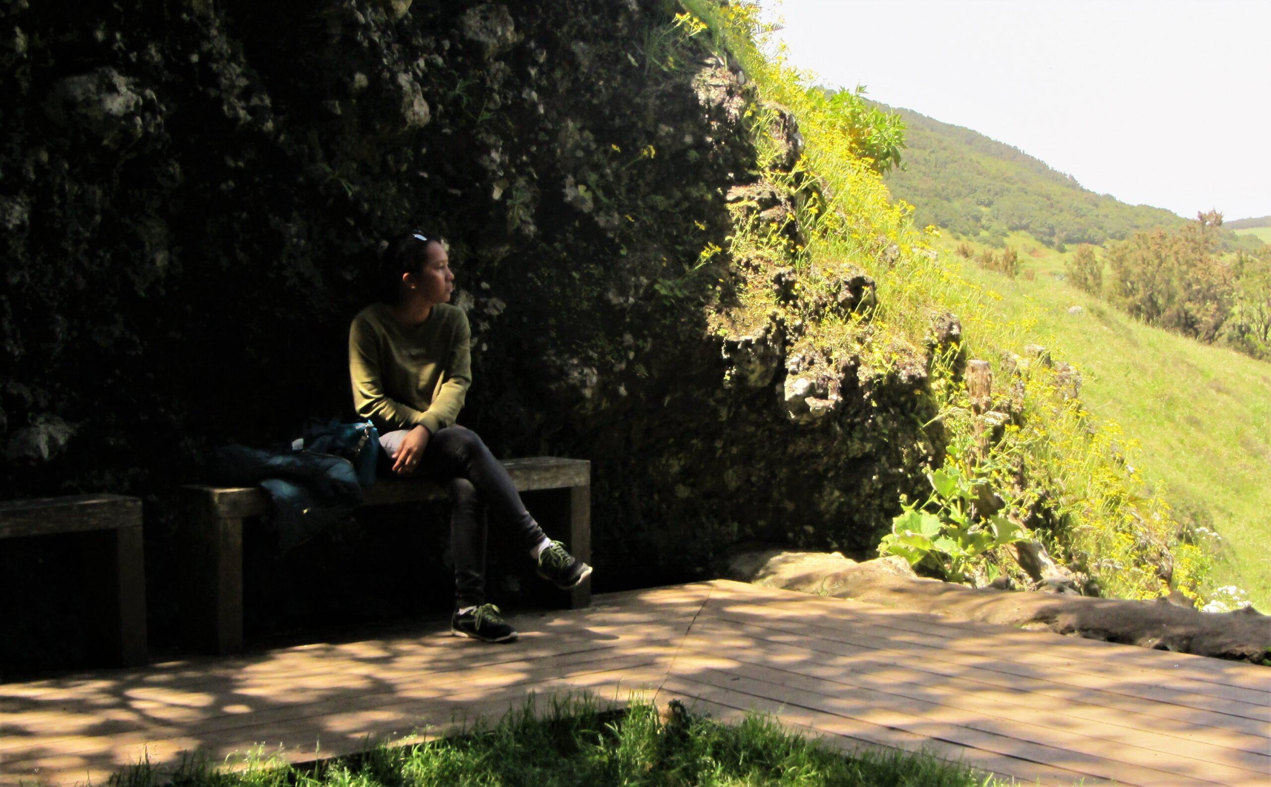 Meditation by the Arbol de Garoe